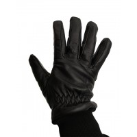 Aircrew Winter Gloves